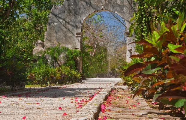 фотографии отеля Hacienda San Jose изображение №31