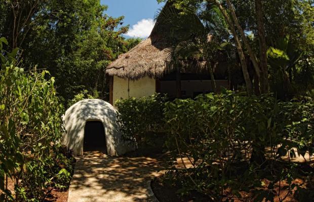 фотографии отеля Bel Air Collection XpuHa Riviera Maya (Bel Air Collection Resort & Animal Sanctuary) изображение №23