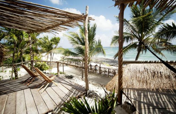 фотографии отеля Papaya playa изображение №19