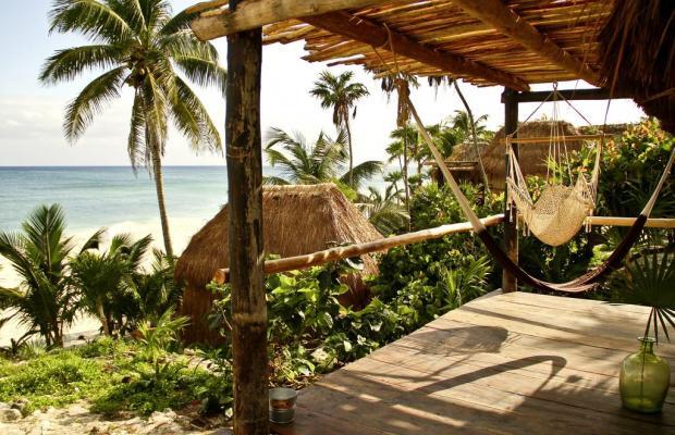 фото Papaya playa изображение №6