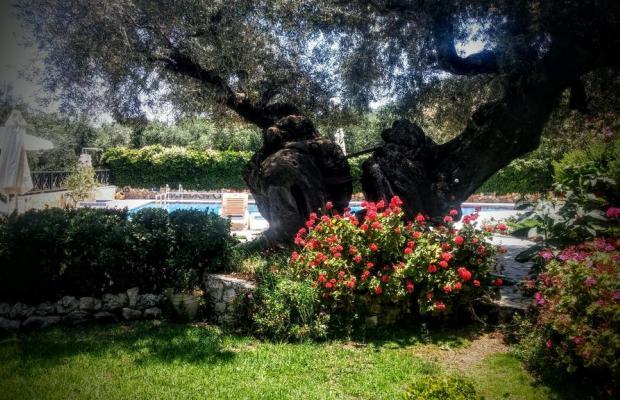 фото Kyprianos изображение №26