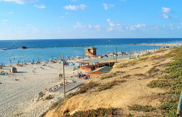 фотографии ArendaIzrail Herzl 72 изображение №4
