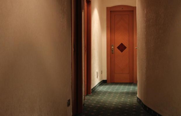 фотографии отеля Priscilla изображение №27