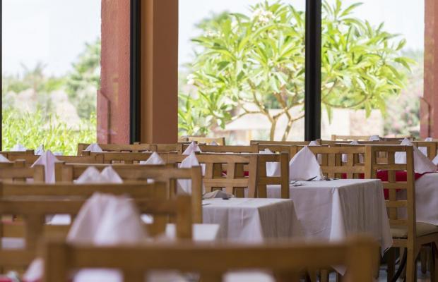 фотографии отеля Park Inn by Radisson Sharm El Sheikh Resort (ex. Radisson Sas Golden Resort) изображение №27