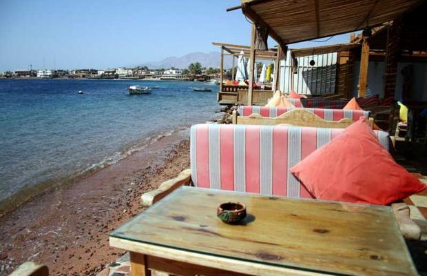 фото Hotel Planet Oasis изображение №46