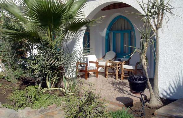 фото Hotel Planet Oasis изображение №6