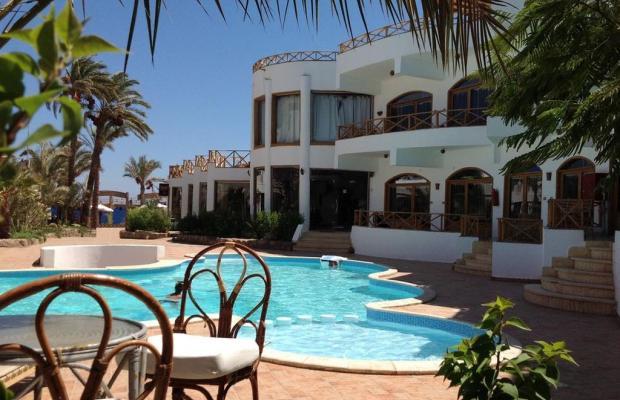 фотографии отеля Red Sea Relax изображение №3