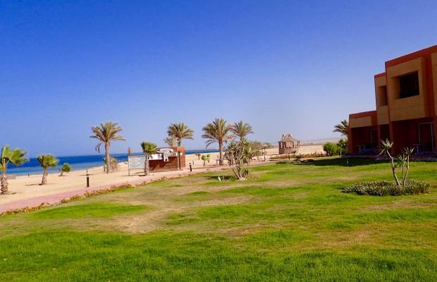 фотографии отеля Wadi Lahmy Azur изображение №11