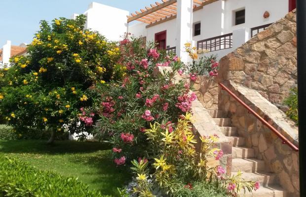 фотографии отеля Gorgonia Beach Resort изображение №55
