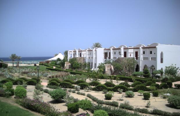 фотографии отеля Gorgonia Beach Resort изображение №43