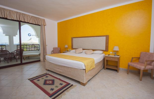 фото Gorgonia Beach Resort изображение №6
