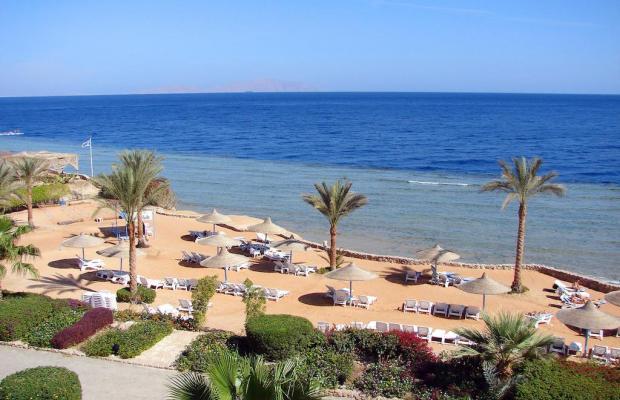 фото Queen Sharm Resort изображение №14