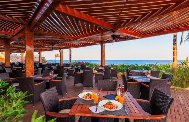 фотографии Cleopatra Luxury Resort изображение №20