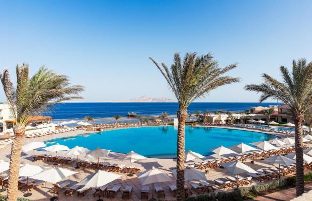 фотографии Cleopatra Luxury Resort изображение №8