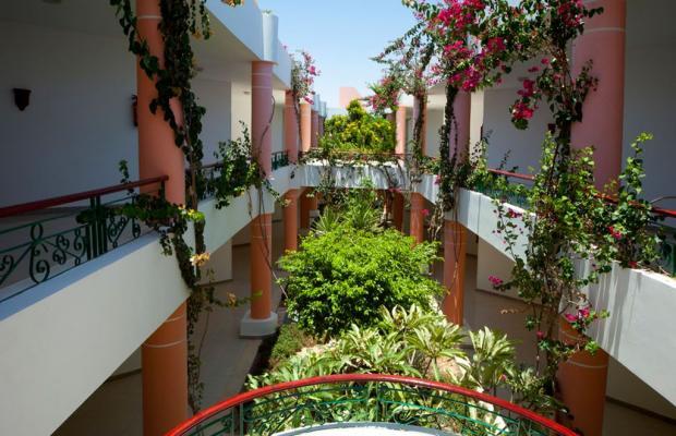 фотографии отеля Fantazia Resort Marsa Alam (ex.Shores Fantazia Resort Marsa Alam) изображение №63