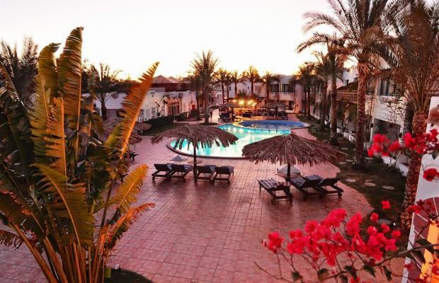 фотографии отеля Ocean Club Red Sea Hotel изображение №7