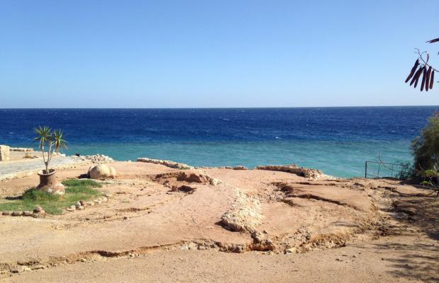 фото Sharm Elysee Resort изображение №10