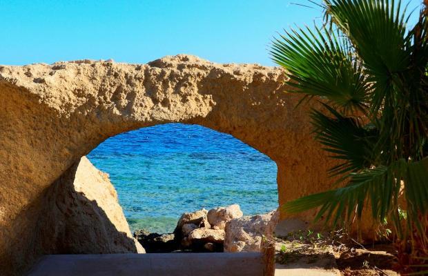 фотографии отеля Stella Di Mare Sharm Beach Hotel & Spa изображение №15