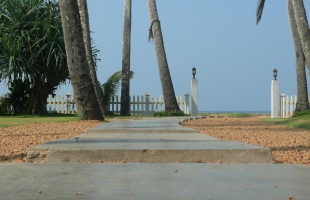 фото Saffron Beach изображение №6