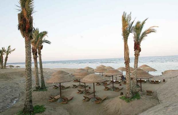 фотографии Swiss Inn Plaza Resort Marsa Alam (ex. Badawia Resort) изображение №8