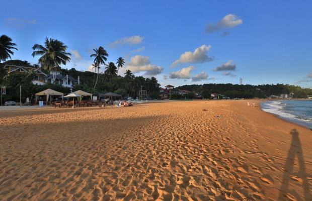 фото отеля Thaproban Beach House изображение №9