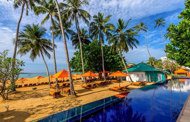 фотографии отеля Calamander Unawatuna Beach (ex. Unawatuna Beach) изображение №7