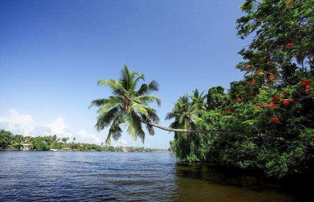 фото отеля Centara Ceysands Resort & Spa Sri Lanka (ex.Ceysands) изображение №49