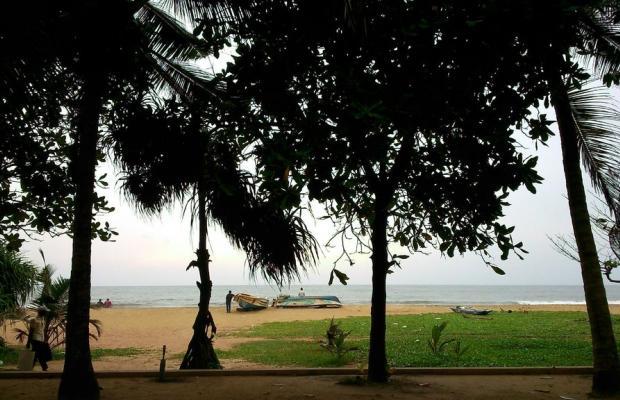 фотографии Don's Beach Hotel изображение №24