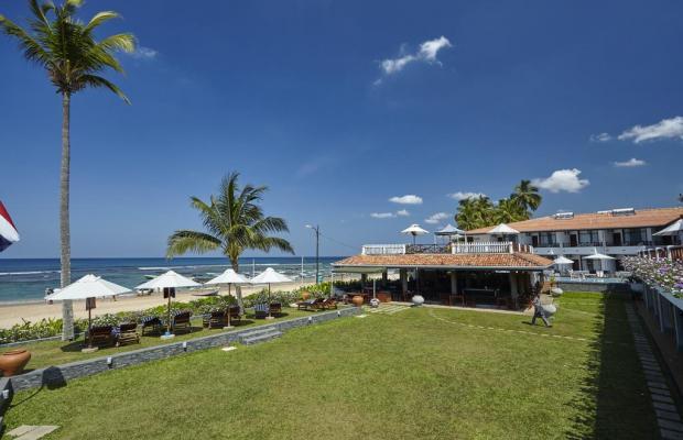 фотографии отеля Coral Sands изображение №23