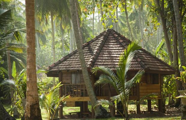 фото Palm Paradise Cabanas изображение №30