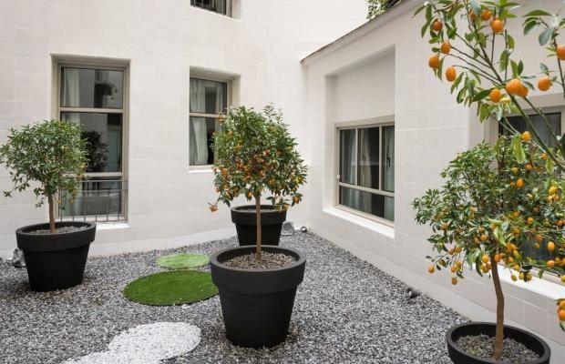фотографии NH Collection Madrid Paseo del Prado (ex. Gran Hotel Canarias) изображение №40