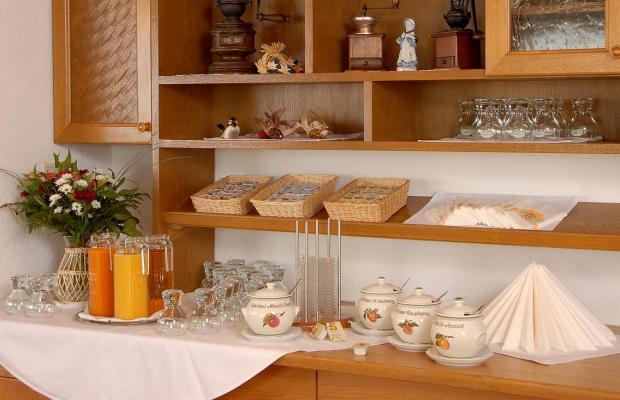 фотографии отеля Edelweiss Pfunds изображение №3