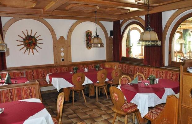 фотографии отеля Alpina Hotel (ex. Alpina Pension) изображение №7