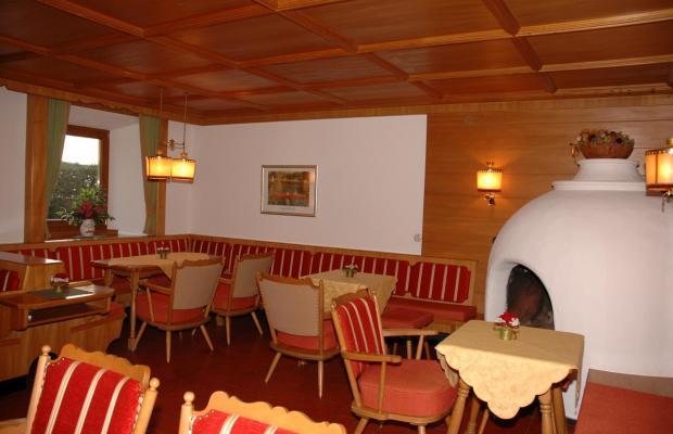 фото Gastehaus Birkenhof изображение №38