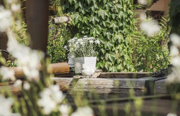 фотографии отеля Alpenhof Kristall изображение №31