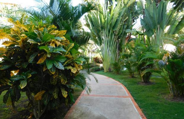 фото Bellevue Dominican Bay (ex. Hotetur Dominican Bay) изображение №6