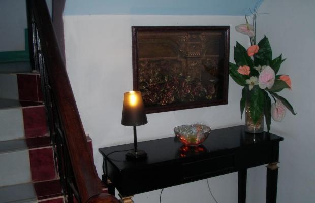 фотографии отеля Anthurium Inn изображение №19