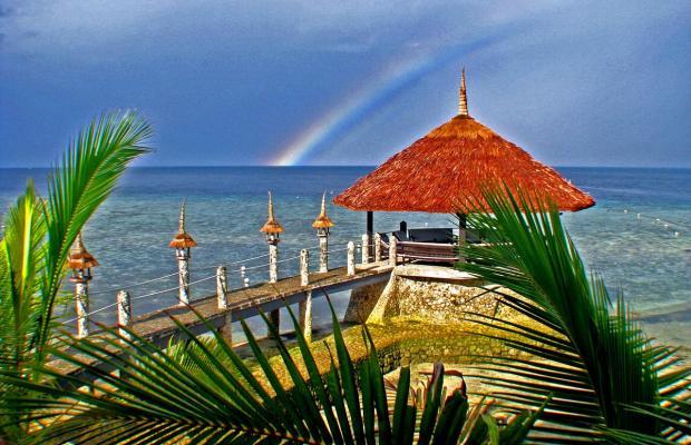фотографии отеля Dolphin House Resort Moalboal изображение №23