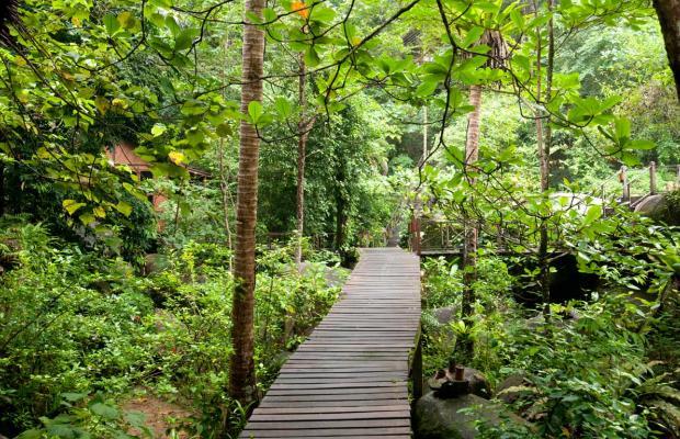 фото Japamala Resort изображение №10