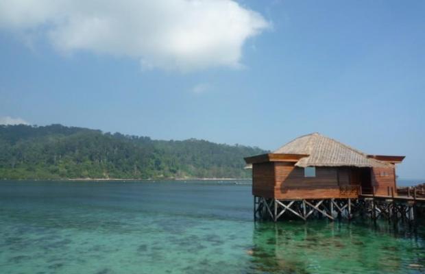 фото отеля Gayana Eco Resort изображение №21