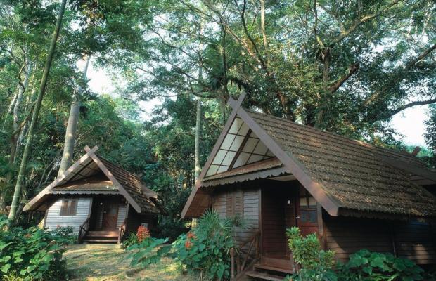 фотографии отеля Mutiara Taman Negara Resort изображение №39