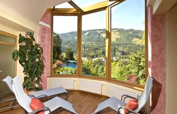 фотографии Hotel Alpenblick изображение №16
