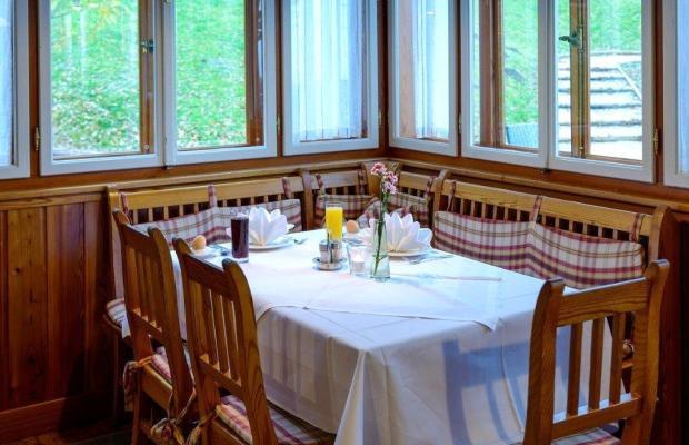 фотографии отеля Panoramagasthof Daxlueg изображение №23