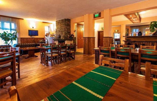 фотографии отеля Avalon (Авалон) изображение №15
