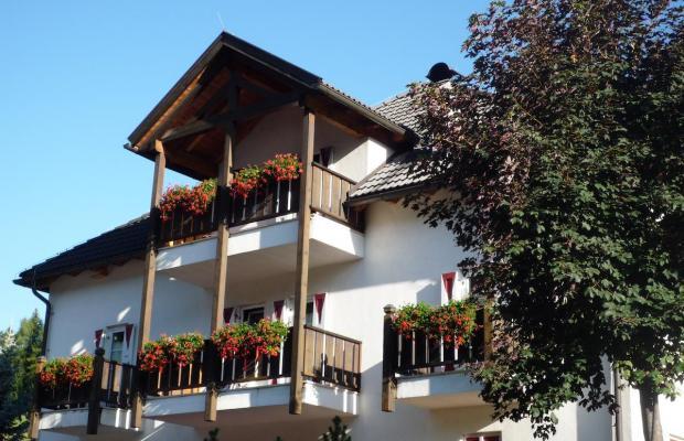 фотографии Casa Metz изображение №44