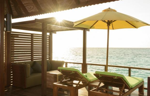 фотографии Dhigufaru Island Resort изображение №40