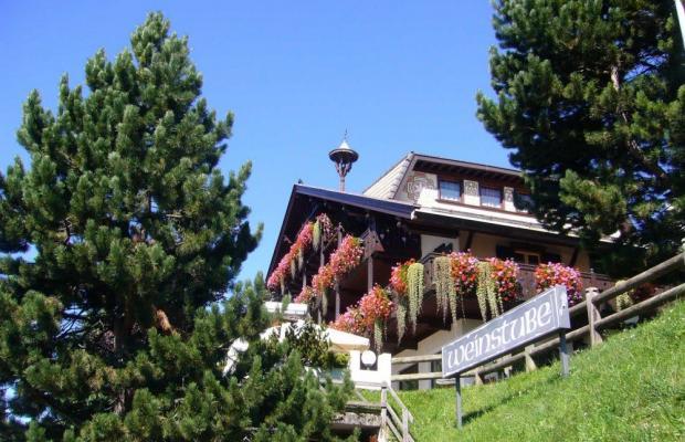 фотографии отеля Hotel Villa Wilma изображение №15
