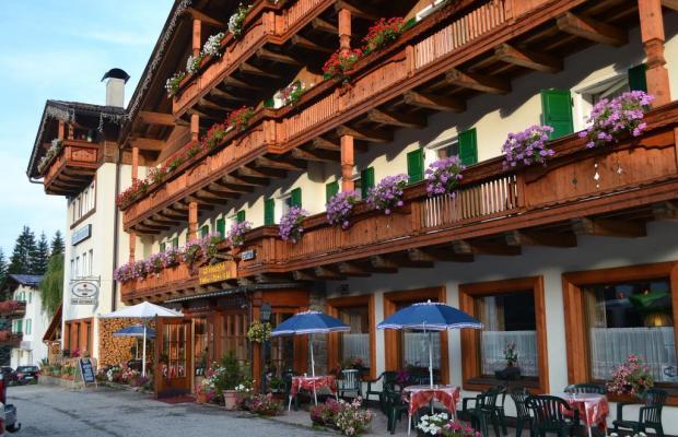 фотографии отеля Hotel Rododendro изображение №23