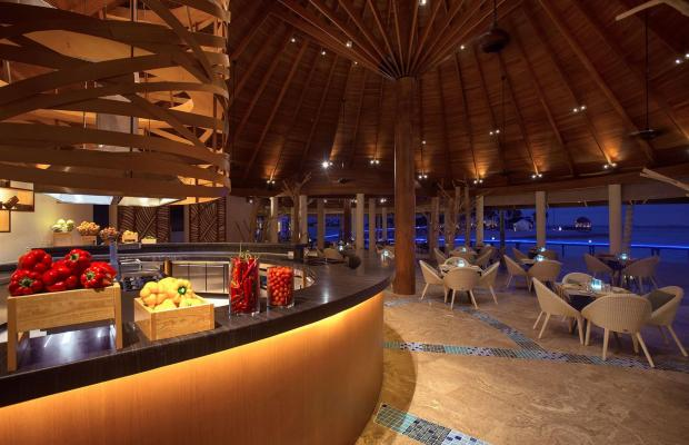 фотографии OZEN by Atmosphere at Maadhoo изображение №52