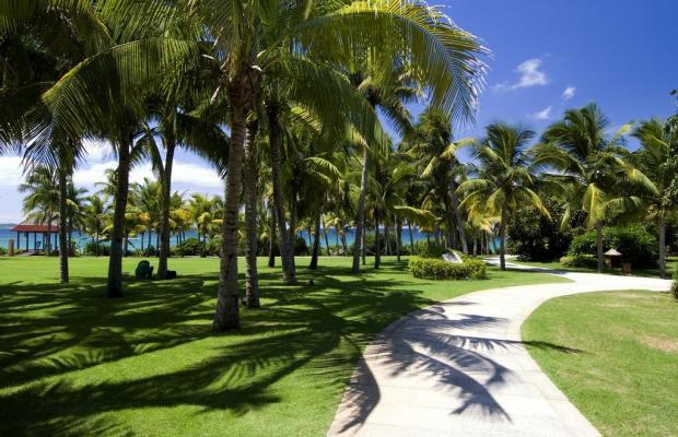 фотографии Yalong Bay Mangrove Tree Resort изображение №8